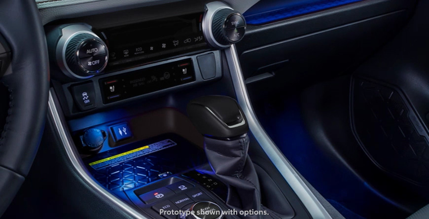 New 2020 Toyota RAV4 Elevated Cabin Experience